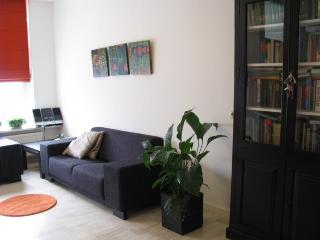 Perfect 1 bedroom Groningen Condo with Internet Access - Groningen vacation rentals