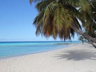 Barbados cheap Apartments 2 min to ocean beach AC - Saint Lawrence Gap vacation rentals