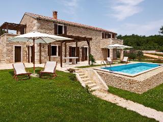 Villa Asparagus - Pazin vacation rentals