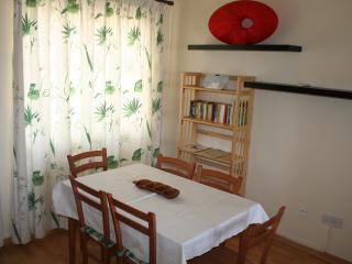 Bright 2 bedroom Condo in Nicosia - Nicosia vacation rentals