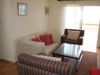 Penthouse Flat in Nicosia - Nicosia vacation rentals