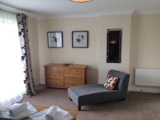 Cormorant Cottage Lakeview Holiday Cottages - Bridgwater vacation rentals