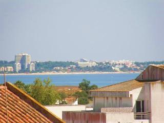 Quinta das Palmerias - Lagos vacation rentals