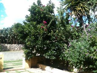 la maddalena casa privata - La Maddalena vacation rentals