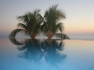Cactus Escondido - Puerto Escondido vacation rentals