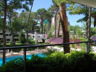 Lovely Apartment   ! Punta del Este - Punta del Este vacation rentals