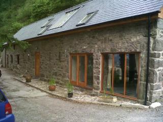 Craig y Gronfa Barn - Dolgellau vacation rentals