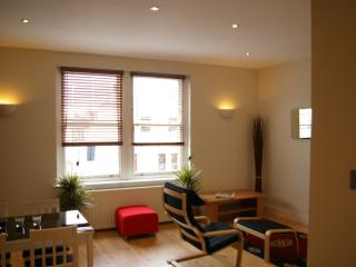 Two Bed Flat Fulham - London vacation rentals
