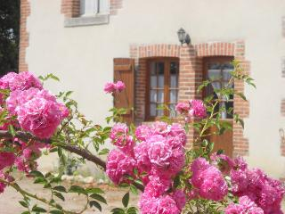 Romantic 1 bedroom Gite in Mennetou-sur-cher with Internet Access - Mennetou-sur-cher vacation rentals