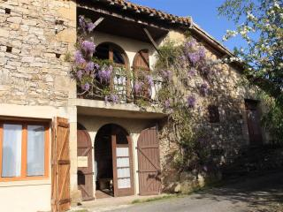 Charming House with Satellite Or Cable TV and Television - Puycelci vacation rentals
