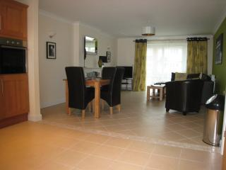 Willow Lodge Lakeview Holiday Cottages - Bridgwater vacation rentals