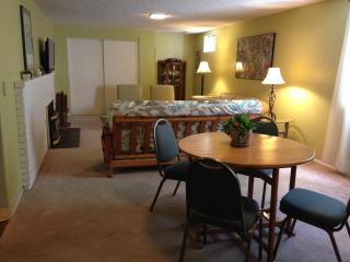 Spacious two bedroom apartment sleeps 6-8. - Missoula vacation rentals
