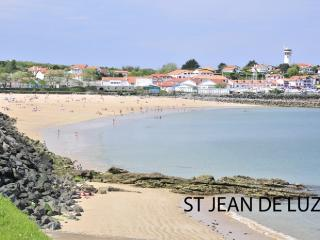 Apartment in Saint Jean De Luz, Biarritz, France - Saint-Jean-de-Luz vacation rentals