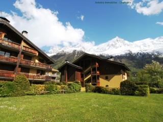 Nice 2 bedroom Chamonix Apartment with Internet Access - Chamonix vacation rentals