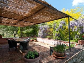 Charming 5 bedroom Villa in Arezzo - Arezzo vacation rentals