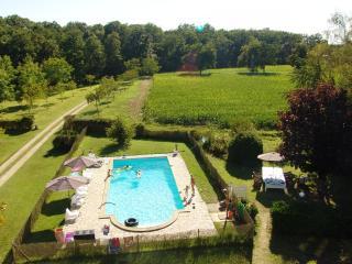 B&B Château La Mothaye - Loire - Brion vacation rentals