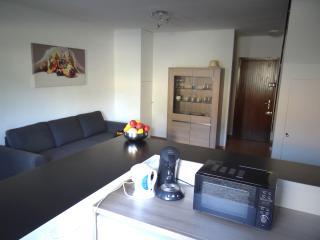 Charmante mini villa T2 tout confort proche Bastia - Borgo vacation rentals