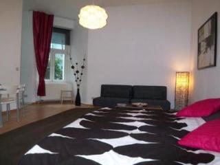 Spacious studio near Mauerpark in Prenzlauer Berg - Berlin vacation rentals