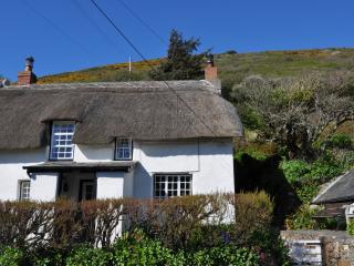 Old Cottage Characterful and 100yds from the beach - Crackington Haven vacation rentals