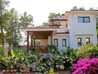 4 bedroom Villa with Internet Access in Gocek - Gocek vacation rentals