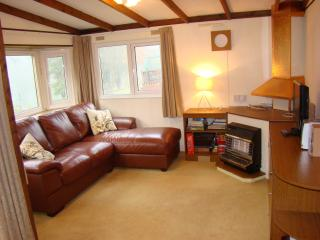 Lakeview Lodge 4 adults+2 kids - Builth Wells vacation rentals