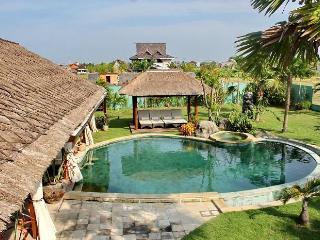 Villa Bora Bora - Canggu vacation rentals