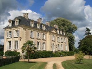 Gite Chateau La Mothaye -Loire - Brion vacation rentals