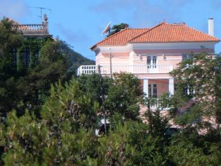 Last minute deal -  Charming Chalet in Sintra - Sintra vacation rentals