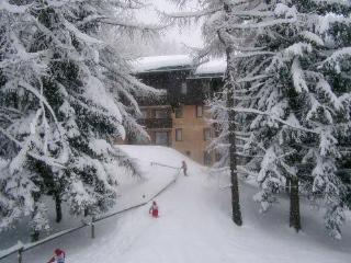 Ski-La Source : Zig Zag : 1 bedroom, Les Coches - Les Coches vacation rentals
