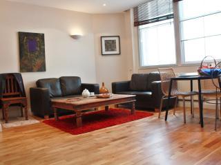 Beautiful & Modern City Flat AC1 - London vacation rentals