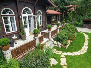 3 bedroom Guest house with Internet Access in Jelenia Gora - Jelenia Gora vacation rentals