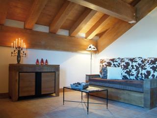 Ski-La Source : Wengen sleeps 4 & 6, Les Coches - Les Coches vacation rentals