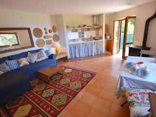 1 bedroom House with Internet Access in Monte Argentario - Monte Argentario vacation rentals