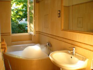 LUXURIOUS central apartment/ hot tub, sauna, balcony - Budapest vacation rentals