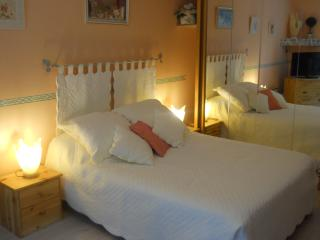 Nice Studio with Internet Access and Kettle - Amelie-les-Bains-Palalda vacation rentals
