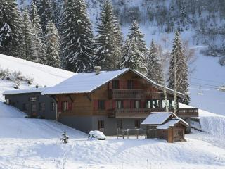 Charming 6 bedroom Chalet in La Cote-d'Arbroz - La Cote-d'Arbroz vacation rentals