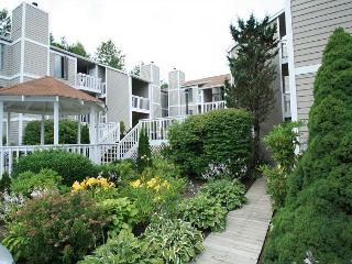 Royal Oak 216 great In-Town condo location, walk to Main Street - Blowing Rock vacation rentals