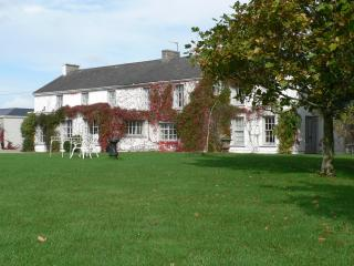 FLEMINGSTOWN HOUSE - Kilmallock vacation rentals