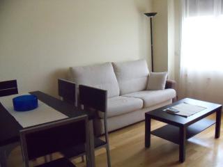 Apartamento completo en Segovi - Segovia vacation rentals