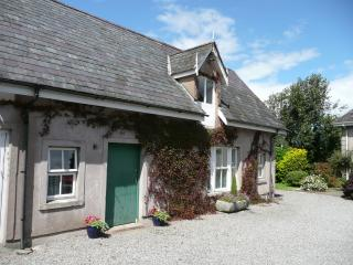 Perfect 3 bedroom Cottage in Enniscorthy - Enniscorthy vacation rentals