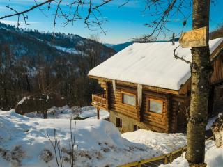 Spacious 5 bedroom Chalet in La Bresse - La Bresse vacation rentals