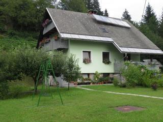 2 bedroom Condo with Internet Access in Bohinjska Bistrica - Bohinjska Bistrica vacation rentals