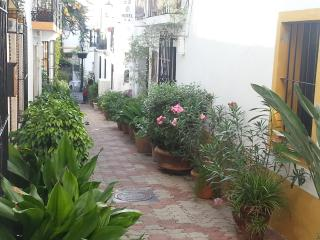 Marbella Old Town - Marbella vacation rentals