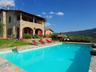 Villa Senaia - Castiglion Fiorentino vacation rentals