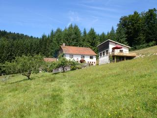 Cozy 2 bedroom Cleurie Gite with Internet Access - Cleurie vacation rentals