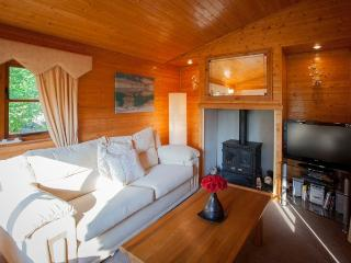Comfortable 2 bedroom Windermere Lodge with Television - Windermere vacation rentals