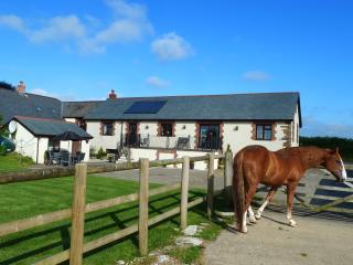Middlehills Barn - Bradworthy vacation rentals