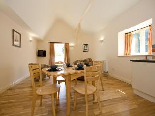 River Apartment - Cheddar vacation rentals