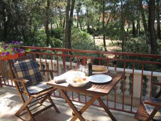 Cozy 1 bedroom Vacation Rental in Zadar - Zadar vacation rentals