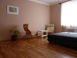 Cozy 1 bedroom Budapest Apartment with Internet Access - Budapest vacation rentals